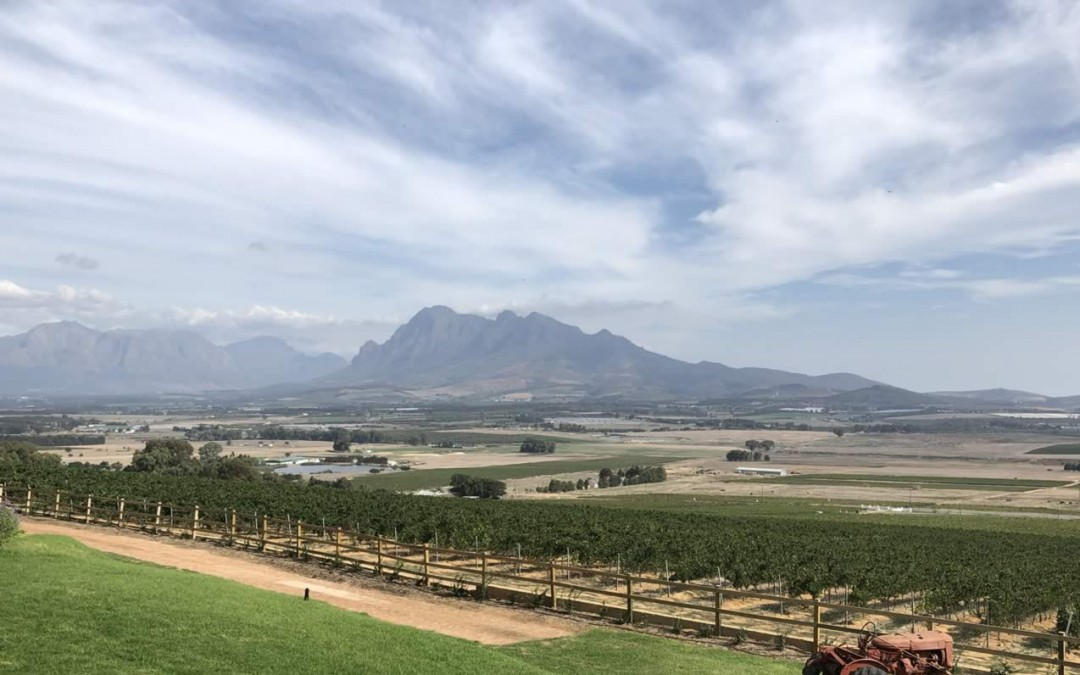5 South African wine regions that should be on every vino-loving traveller's bucket list