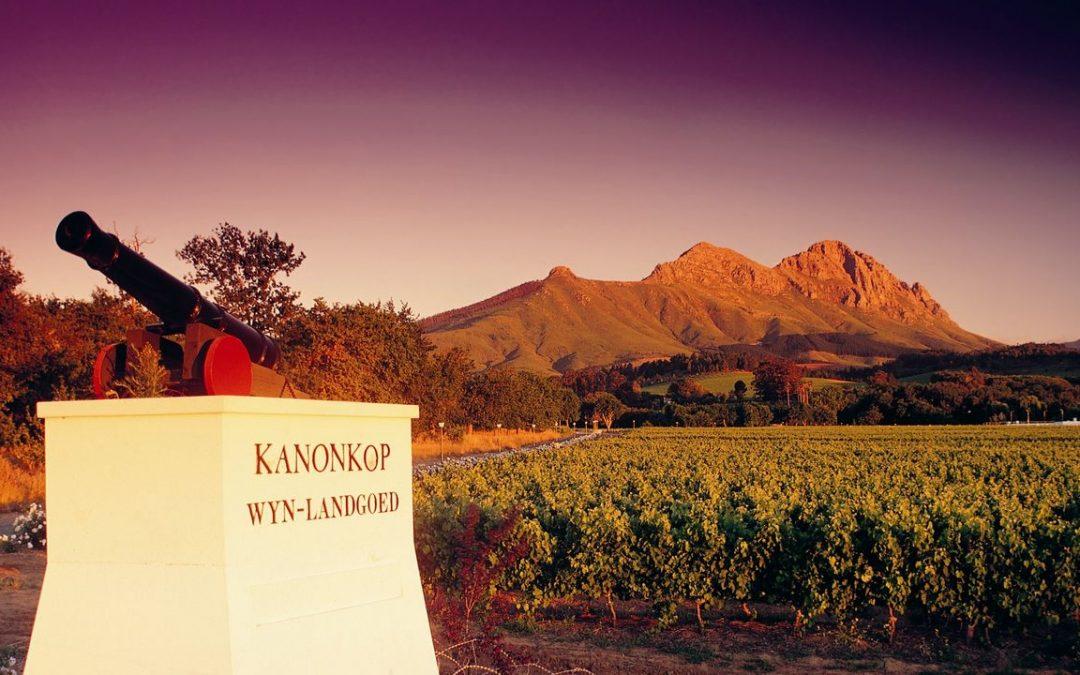 Featured Winery – Kanonkop Wine Estate