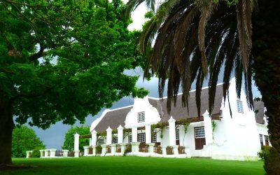Meerlust Estate – a storied name and national treasure in South Africa